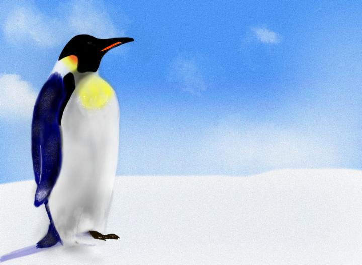 Penguin #02